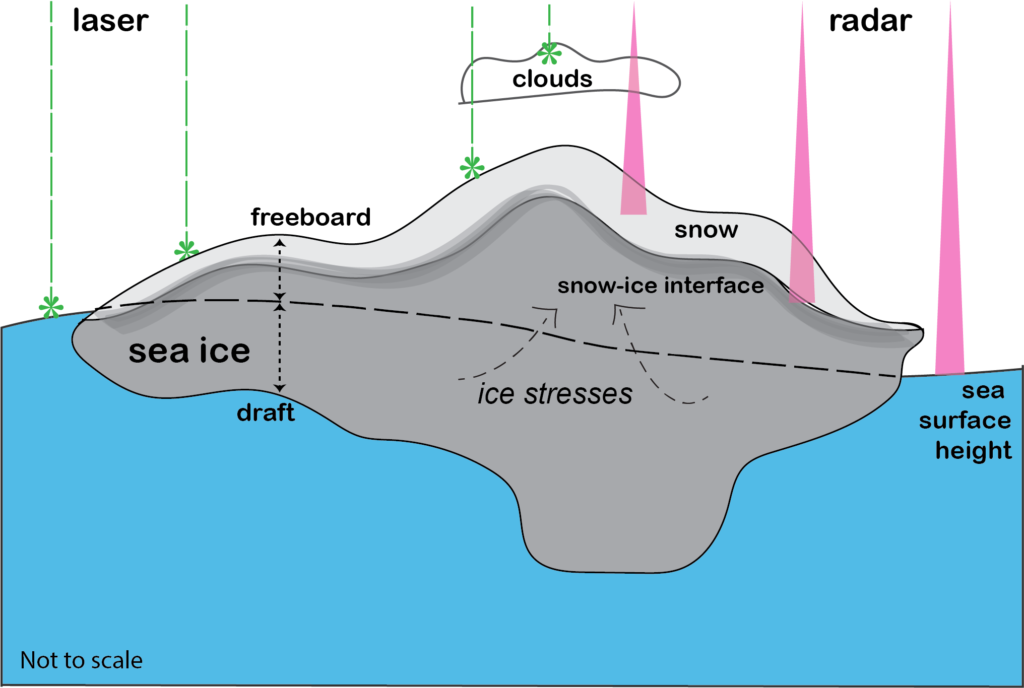 Figure 2: A simplified schematic of sea ice and how we measure sea ice thickness from space using either radar or laser altimetry of sea ice freeboard. Some of the key areas of complexity involved in this approach are highlighted. The sea ice floe depicted is not to scale. Sea ice is generally much thinner/broken up and spread out than depicted here!